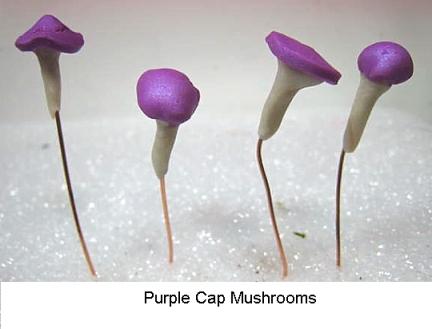 purplemush